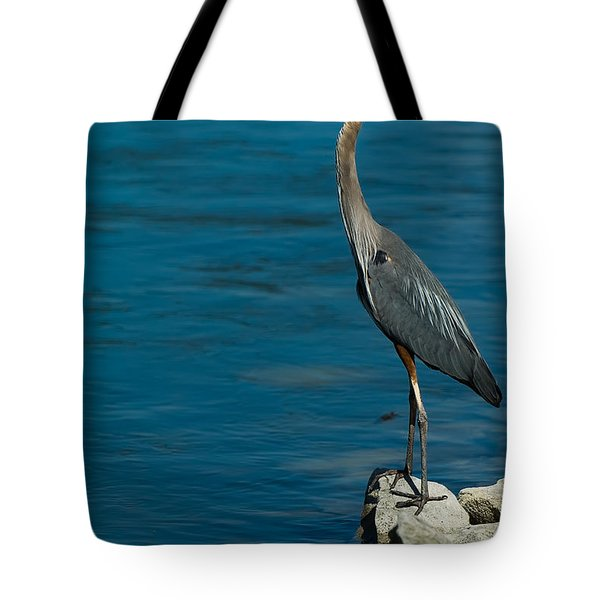 Great Blue Heron Tote Bag by Sebastian Musial