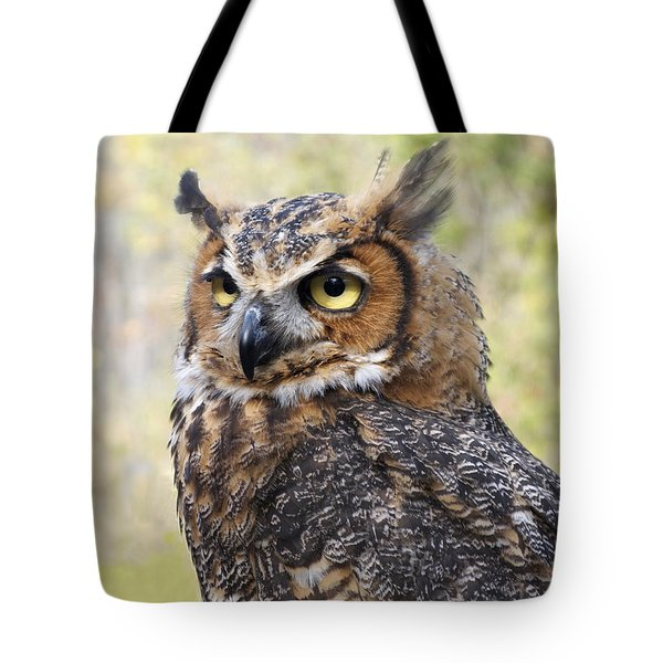 Great Horned Owl Tote Bag by Ann Horn