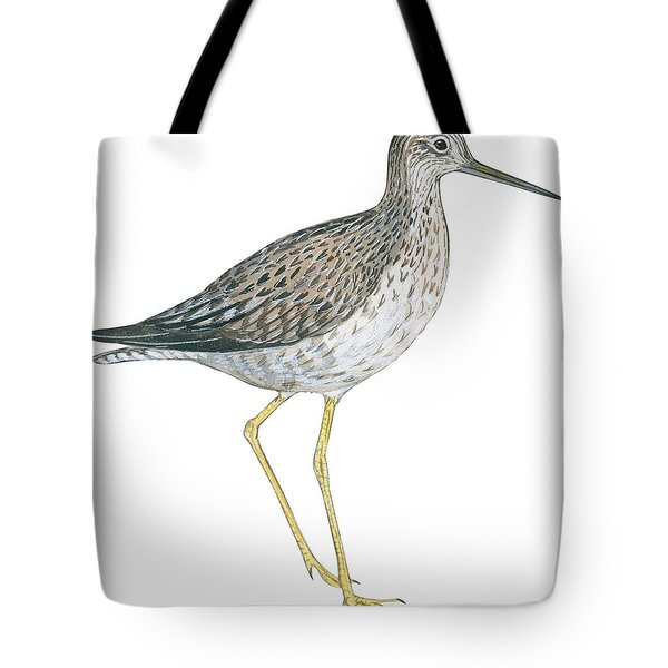 Greater Yellowlegs  Tote Bag by Anonymous