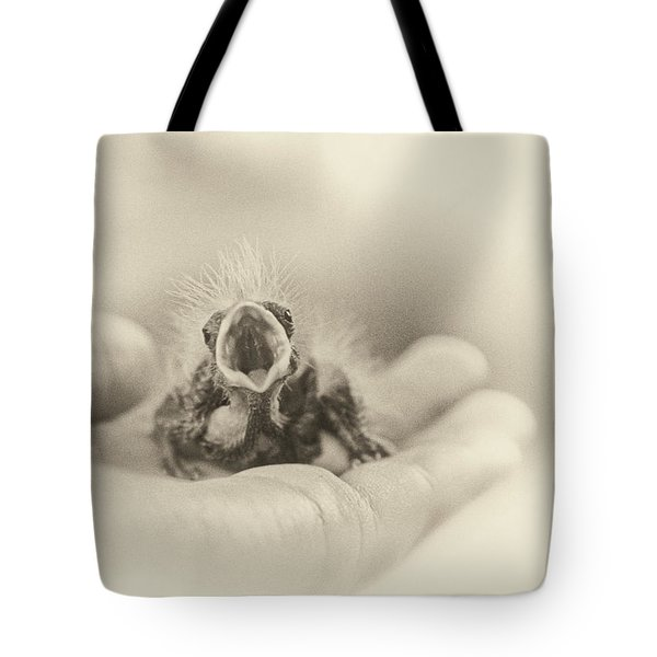 Greed Tote Bag by Caitlyn  Grasso