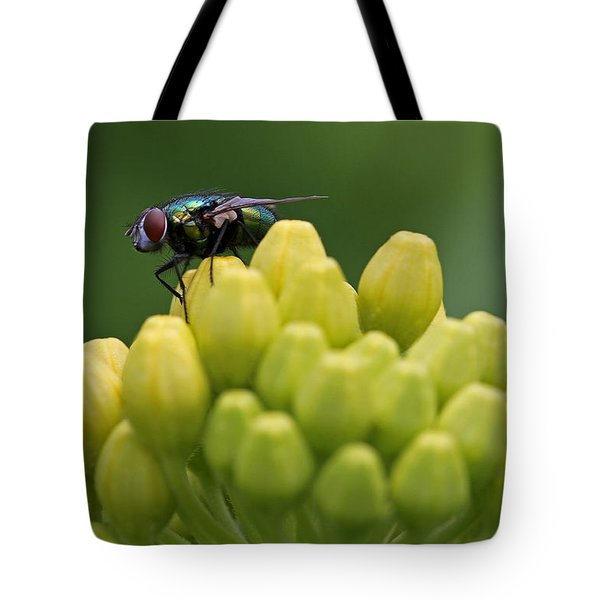 Green Bottle Fly Macro Tote Bag by Juergen Roth