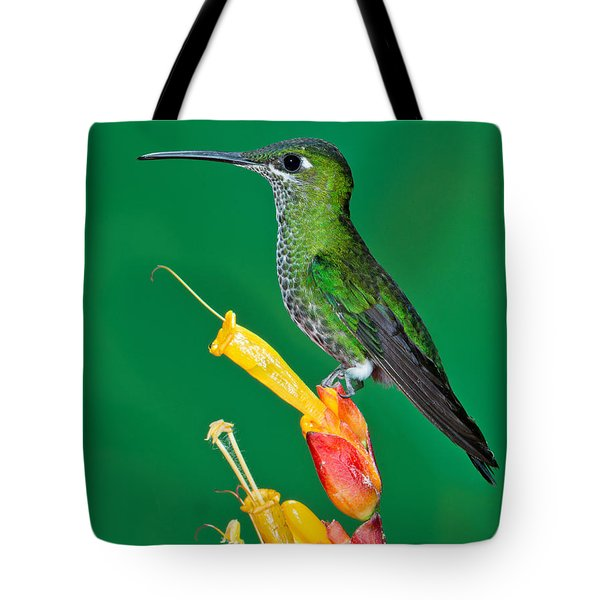 Green-crowned Brilliant Tote Bag by Anthony Mercieca
