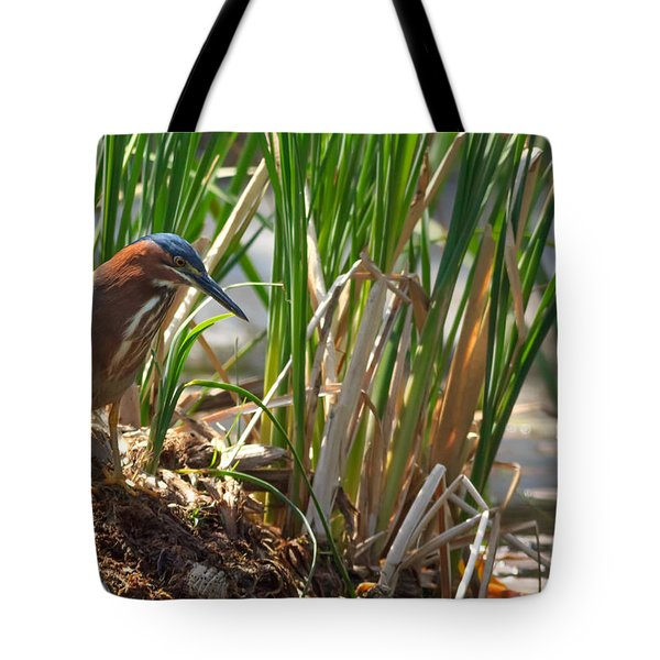 Green Heron FIshing Tote Bag by Kathleen Bishop