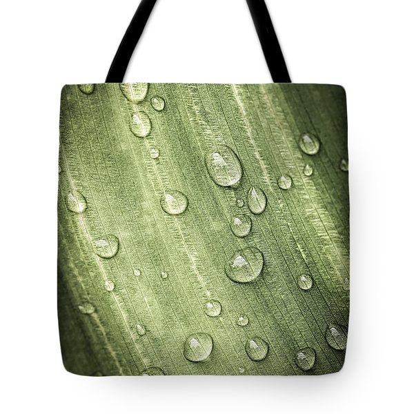 Green leaf with raindrops Tote Bag by Elena Elisseeva