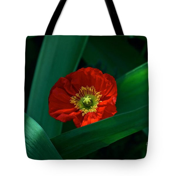 Green Loves Red Loves Green Tote Bag by Byron Varvarigos