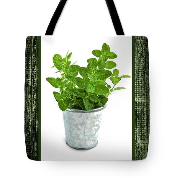 Green oregano herb in small pot Tote Bag by Elena Elisseeva