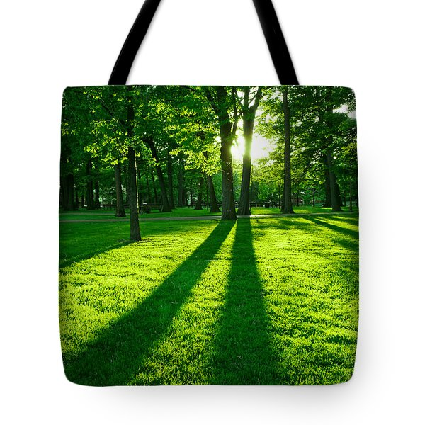Green park Tote Bag by Elena Elisseeva