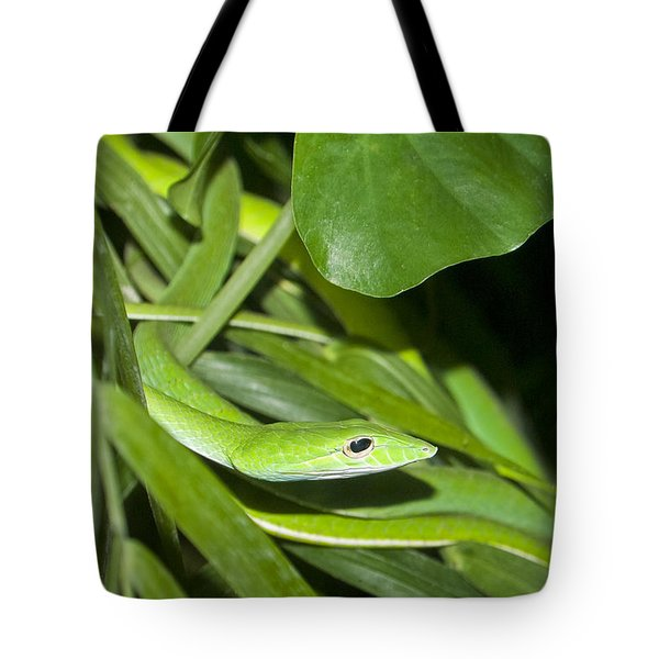 Green Snake Tote Bag by Greg Reed
