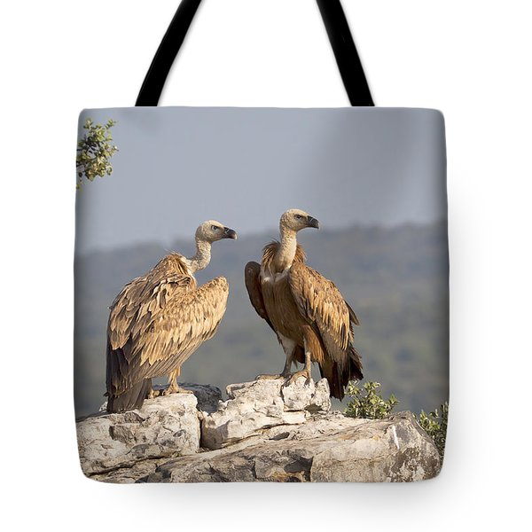 Griffon Vulture Pair Extremadura Spain Tote Bag by Gerard de Hoog