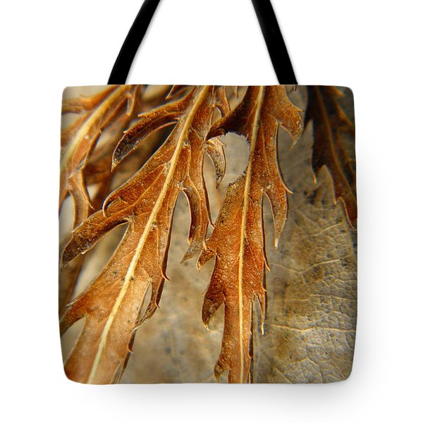 Grip Of Winter Tote Bag by Chris Berry