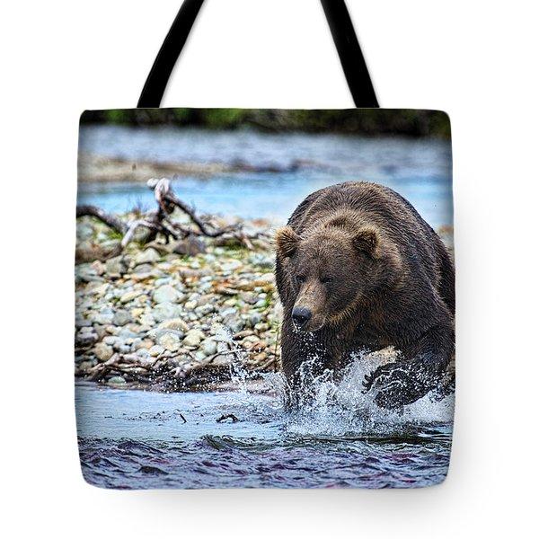 Brown Bear Spotting Salmon In Water Tote Bag by Dan Friend