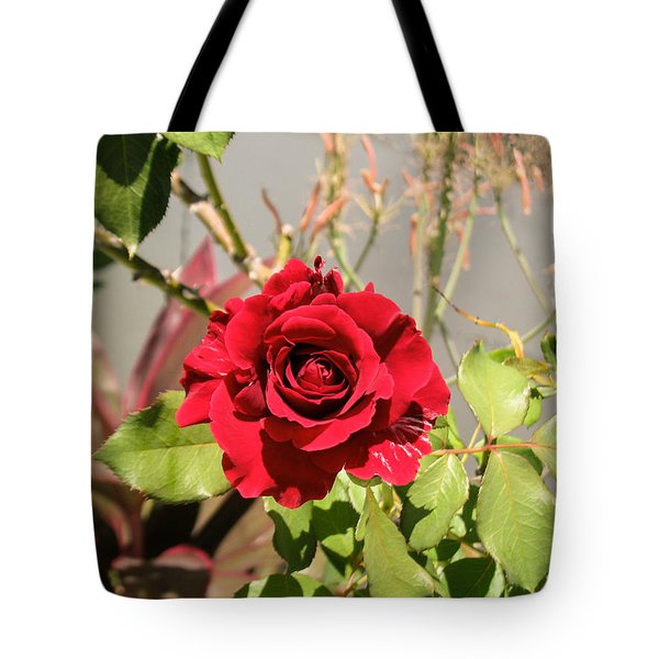 Growing Rose Tote Bag by Zina Stromberg