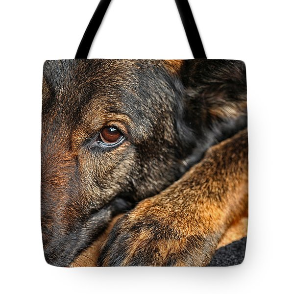 Guard Dog At Rest Tote Bag by Karol  Livote