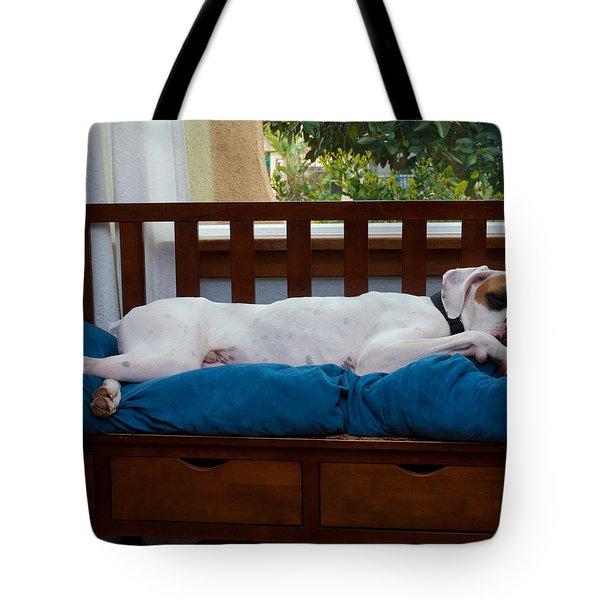 Guard Dog Tote Bag by Dennis Reagan