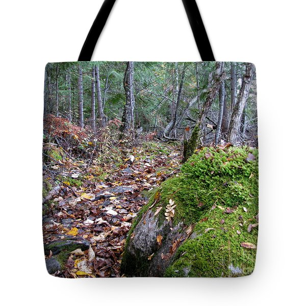 Guardian Rock Tote Bag by Leone Lund