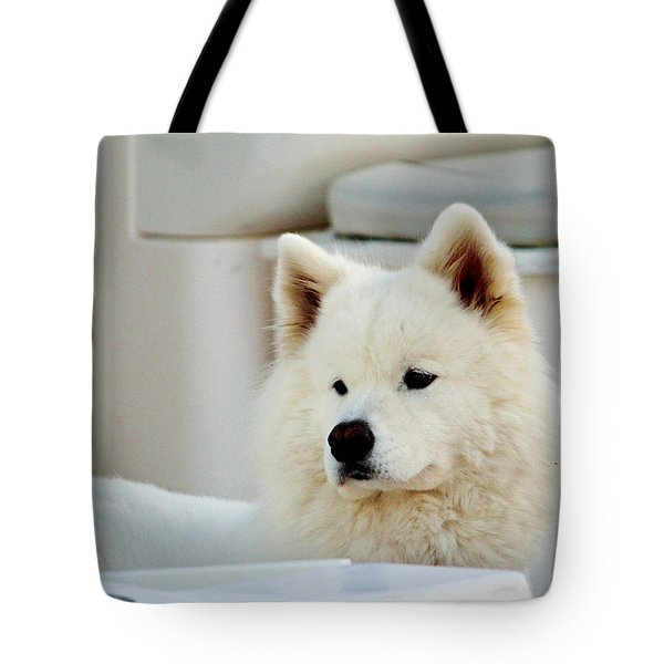 Guarding The Boat Tote Bag by Cynthia Guinn