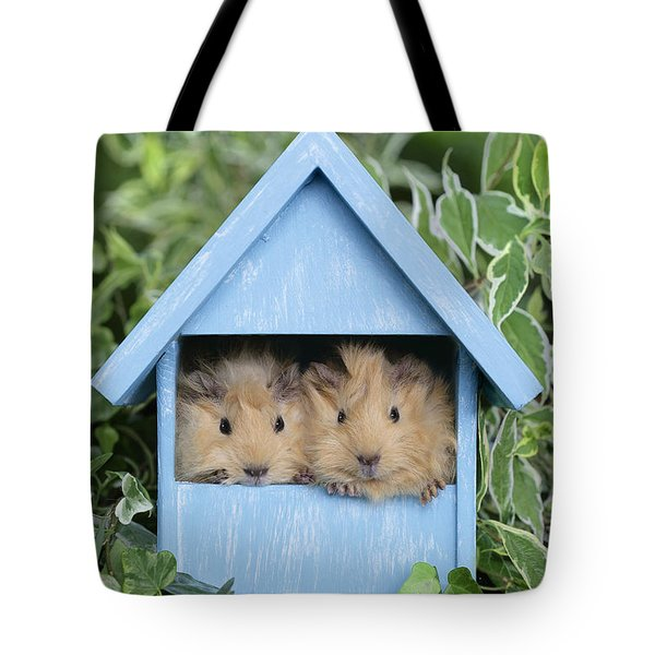 Guinea Pig In House Gp104 Tote Bag by Greg Cuddiford