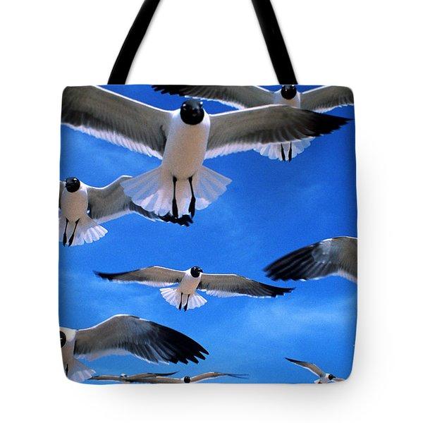 Gulls In Flight Tote Bag by Geoge Ranalli