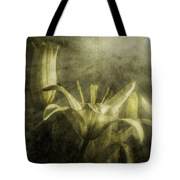 Halleluiah Tote Bag by Diane Schuster
