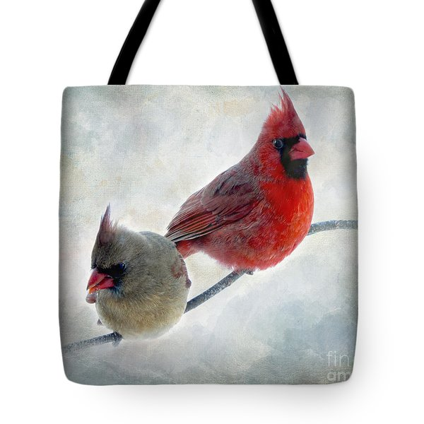 Handsome Couple IIi Tote Bag by Debbie Portwood