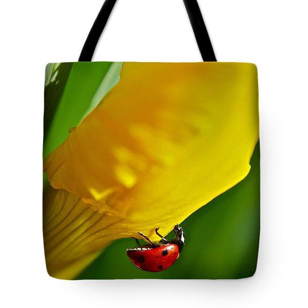 Hang On Tote Bag by Bill Owen