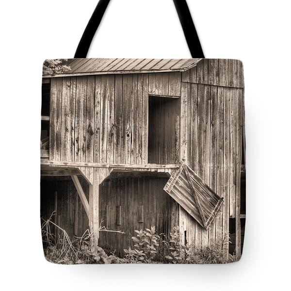 Hanging by a Moment BW Tote Bag by JC Findley