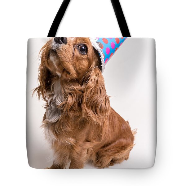 Happy Birthday Dog Tote Bag by Edward Fielding