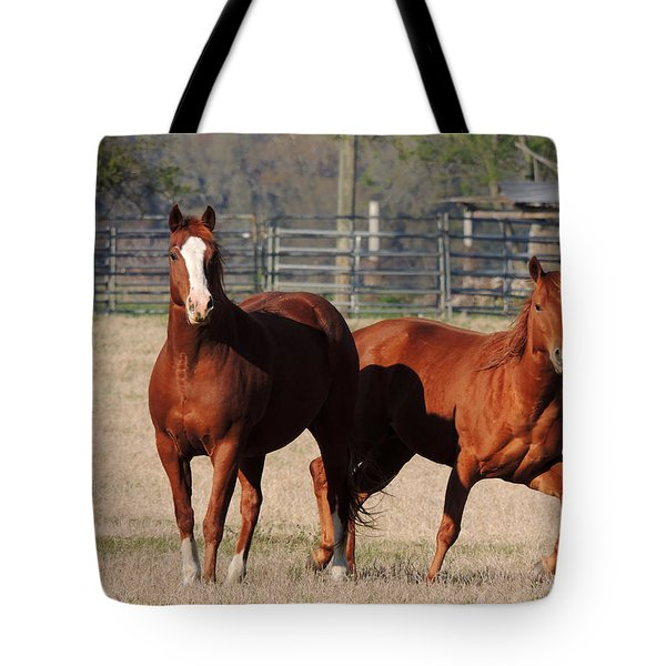 Happy Horses Hoofin-it Tote Bag by Kim Pate