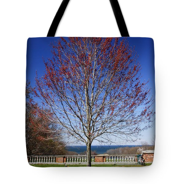 Harmonic Tremors Tote Bag by Evelina Kremsdorf
