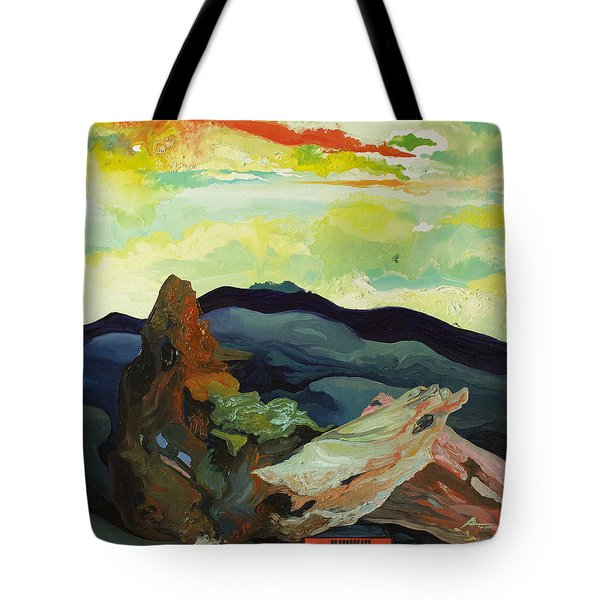 Harmonica Under Firewood Tote Bag by Joseph Demaree