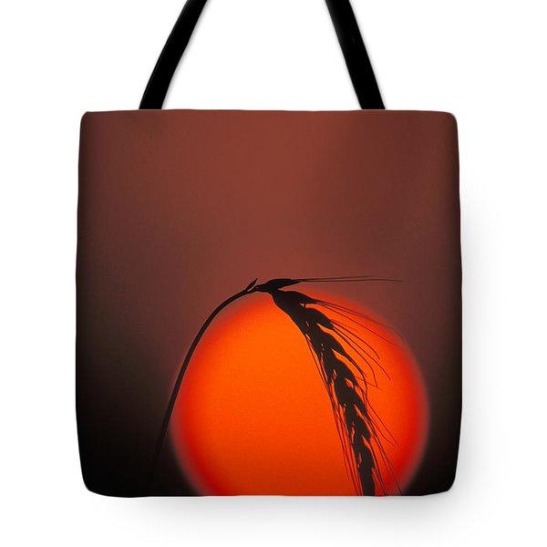 Harvest Sunset - FS000416 Tote Bag by Daniel Dempster