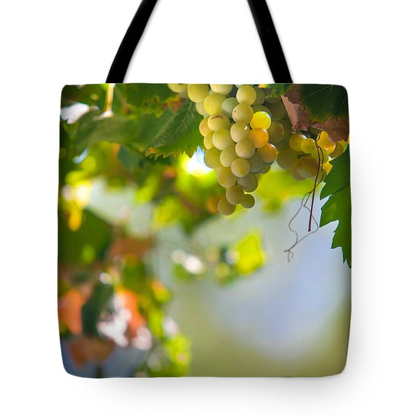 Harvest Time. Sunny Grapes V Tote Bag by Jenny Rainbow