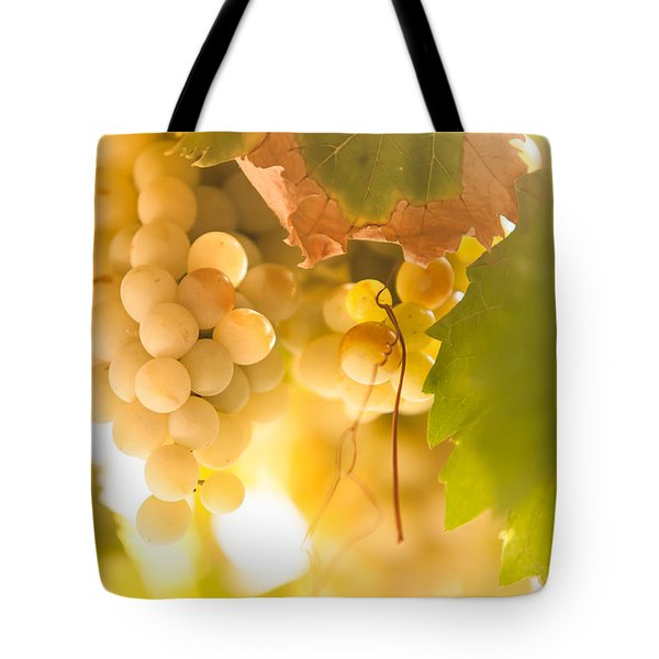 Harvest Time. Sunny Grapes VI Tote Bag by Jenny Rainbow