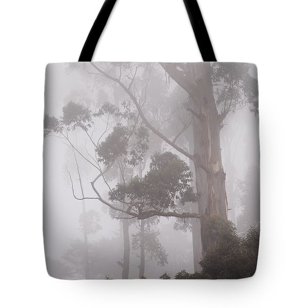 Haunted Forest. Nuwara Eliya. Sri Lanka Tote Bag by Jenny Rainbow