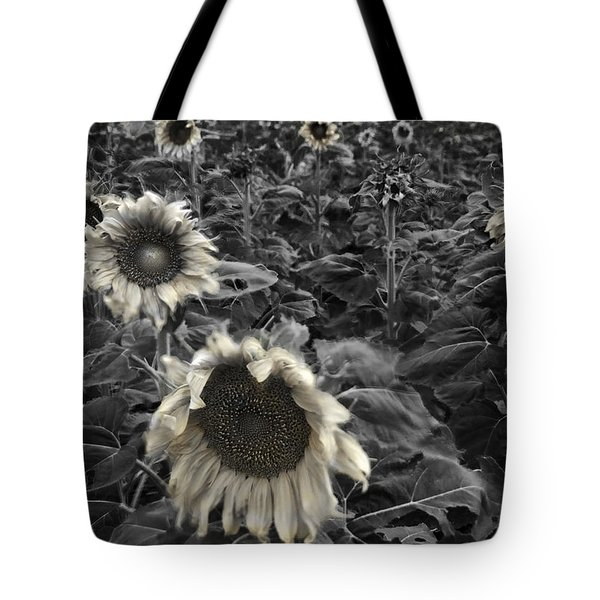 Haunting Sunflower Fields 2 Tote Bag by Dave Dilli