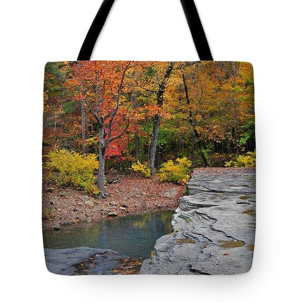 Haw Creek Fall 2 Tote Bag by Marty Koch