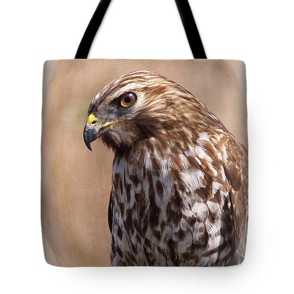 Hawk - Sphere - Bird Tote Bag by Travis Truelove