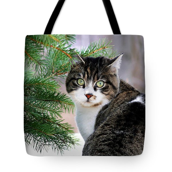 Hazel Eyes And Pine Tote Bag by Christina Rollo