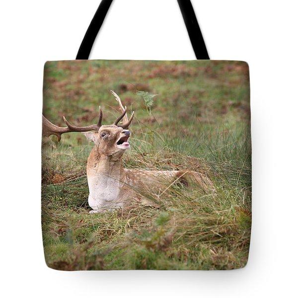 Hear Me Roar Tote Bag by Mark Severn