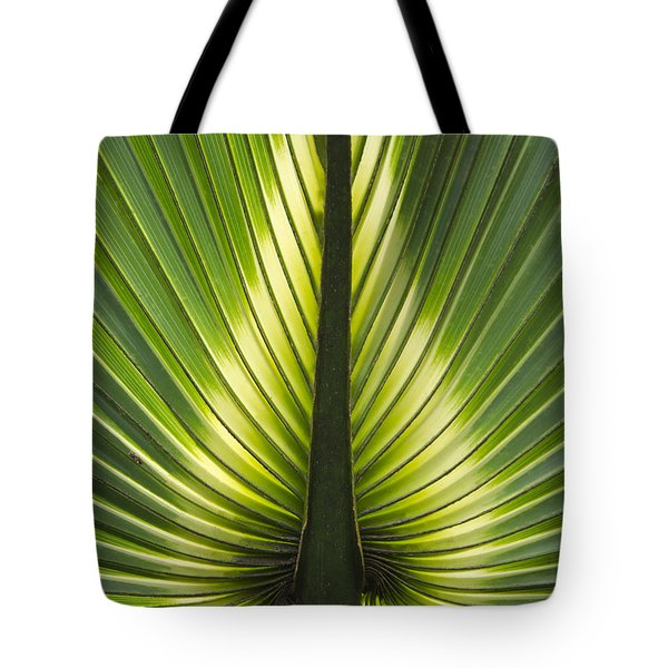 Heart Of Palm Tote Bag by Roger Leege