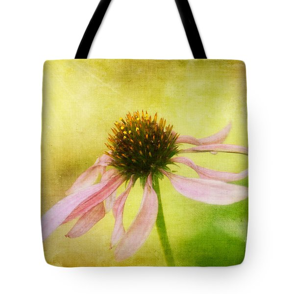 Heart's Desire Tote Bag by Lois Bryan