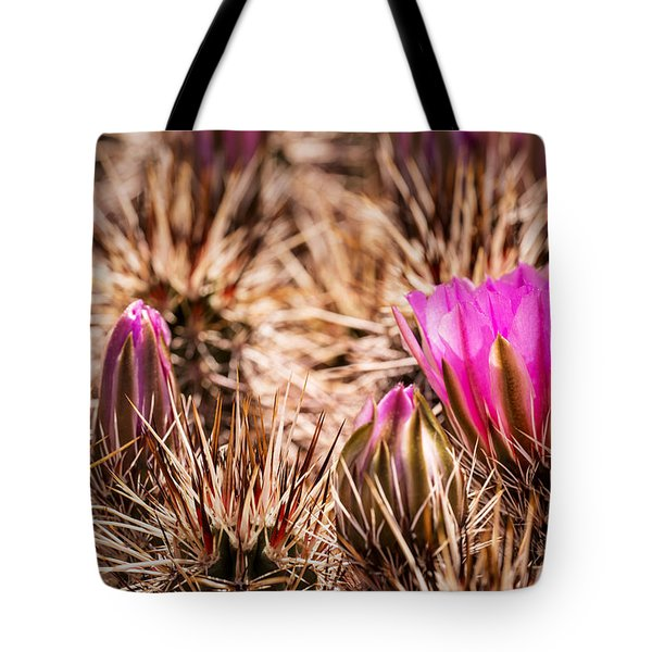 Hedgehog Cactus Flower And Buds Tote Bag by  Onyonet  Photo Studios