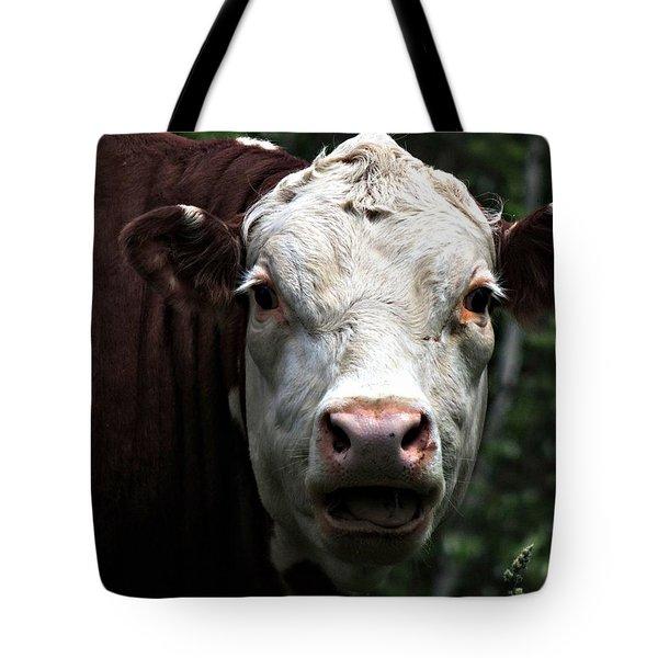 Help Me  Tote Bag by Marcia Lee Jones