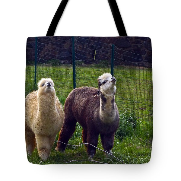 Here Comes Royalty Tote Bag by Byron Varvarigos