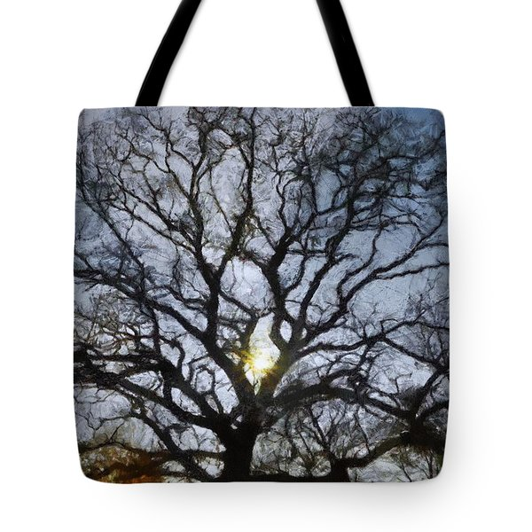 Here Comes The Sun Tote Bag by Jeff Kolker
