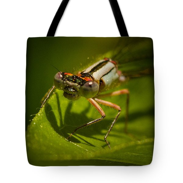Heres Looking At You Tote Bag by Jean Noren