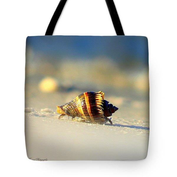 Hermit Crab  Tote Bag by Debra Forand