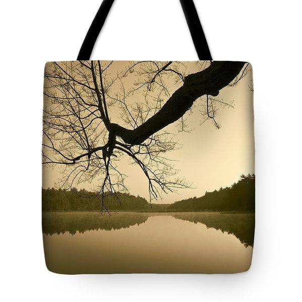 Hewitt Pond Tote Bag by David Gordon