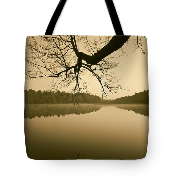 Hewitt Pond No. 2 - vertical Tote Bag by David Gordon