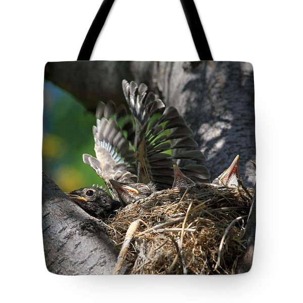 Hey - Can You Move Over? Tote Bag by Donna Kennedy